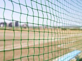 第62回春季東北地区高校野球岩手県大会優勝校決定