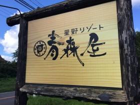 【星野リゾート 青森屋】浮湯で最高に和んできた。